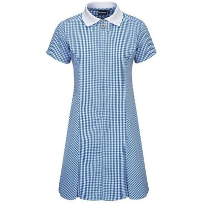 Avon Blue Check Dress small
